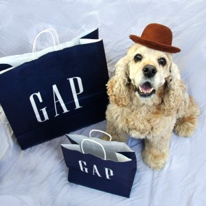 Gus shopping