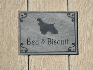 bed-biscuit